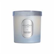 Echoes Lab  Pineapple Dream Scented Dual Wick All Natural Candle