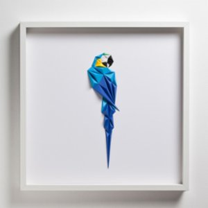 Paperpan	  Blue Macaw Artwork