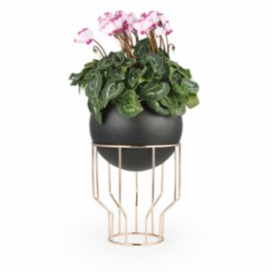 Coho Objet	  Tarz Maxi Flower Pot with Copper Stand
