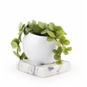 Coho Objet  Earth Flower Pot with Magma Carre Marble