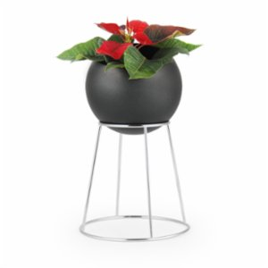 Coho Objet	  Zarif Flower Pot with Chrome Stand