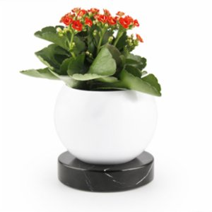 Coho Objet	  Earth Flower Pot with Magma Circle Marble