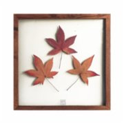 Save The Flowers  Glass N012 Frame