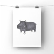 paperwork.istanbul  Hippo Poster