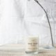 Noisso Woody Forest Single Wick Soy Candle