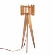Mad Light  Dynamic Floor Lamp
