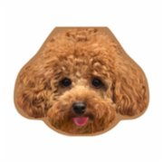 Cheerlabs  Greeting Card with Sound Recording - Alf the Toypoodle