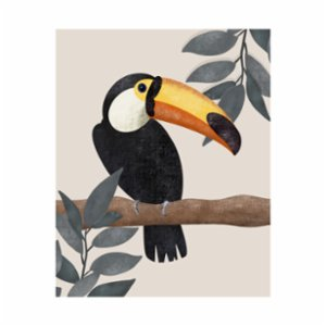 Deniz Sipahi Studio  The Toco Toucan Edition