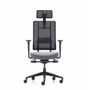 Rapido  X-Trans Office Chair