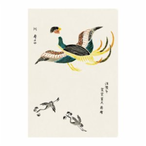 Sauca Collection	  Japanese Colorful Crane By Taguchi Tomoki 2 Printing
